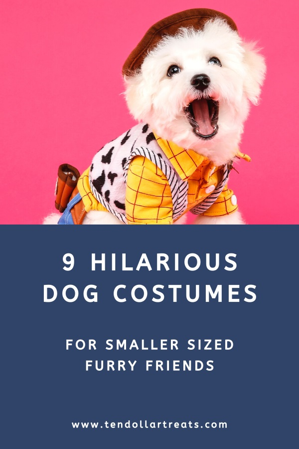 9 Funny dog costumes for small dogs